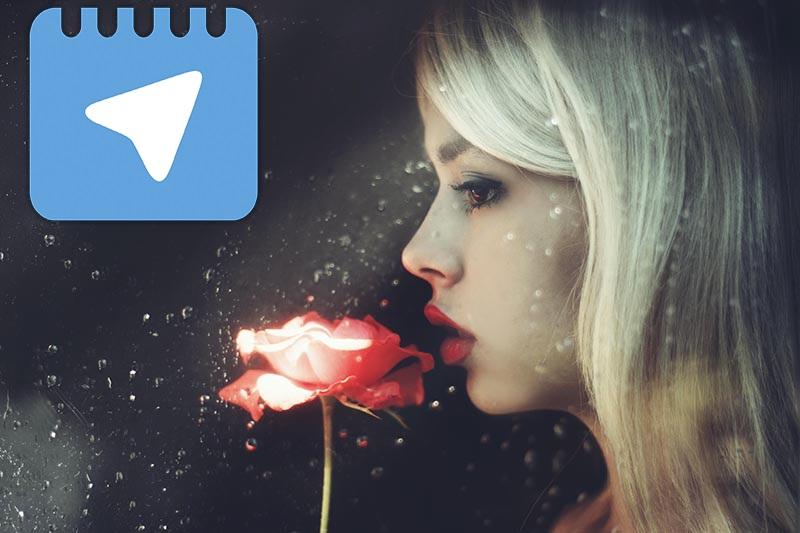 عضو گروه خیاطی در تلگرام گروه بانوان تلگرام - خدمات تلگرام