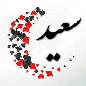 اسم پروفایل سعید